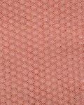 SWISS LACE Swiss Voile Stone Edge Design- Peach