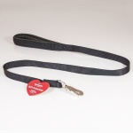Soft Protection Dog Lead Leash
